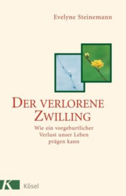 Der verlorene Zwilling - Evelyne Steinemann |