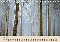 Der Wald. Durch zauberhafte Waldlandschaften (Tischkalender 2019 DIN A5 quer) - Produktdetailbild 1