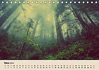 Der Wald. Durch zauberhafte Waldlandschaften (Tischkalender 2019 DIN A5 quer) - Produktdetailbild 3