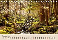 Der Wald. Durch zauberhafte Waldlandschaften (Tischkalender 2019 DIN A5 quer) - Produktdetailbild 2