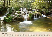 Der Wald. Durch zauberhafte Waldlandschaften (Tischkalender 2019 DIN A5 quer) - Produktdetailbild 6