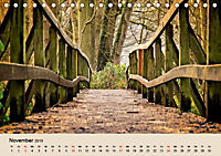 Der Wald. Durch zauberhafte Waldlandschaften (Tischkalender 2019 DIN A5 quer) - Produktdetailbild 11