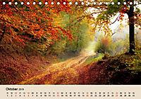 Der Wald. Durch zauberhafte Waldlandschaften (Tischkalender 2019 DIN A5 quer) - Produktdetailbild 10