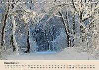 Der Wald. Durch zauberhafte Waldlandschaften (Tischkalender 2019 DIN A5 quer) - Produktdetailbild 12