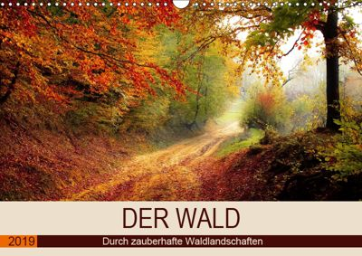 Der Wald. Durch zauberhafte Waldlandschaften (Wandkalender 2019 DIN A3 quer), Rose Hurley