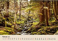 Der Wald. Durch zauberhafte Waldlandschaften (Wandkalender 2019 DIN A3 quer) - Produktdetailbild 2