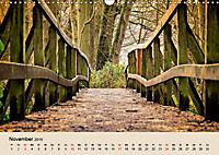 Der Wald. Durch zauberhafte Waldlandschaften (Wandkalender 2019 DIN A3 quer) - Produktdetailbild 11