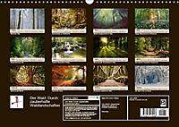 Der Wald. Durch zauberhafte Waldlandschaften (Wandkalender 2019 DIN A3 quer) - Produktdetailbild 13