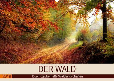Der Wald. Durch zauberhafte Waldlandschaften (Wandkalender 2019 DIN A2 quer), Rose Hurley