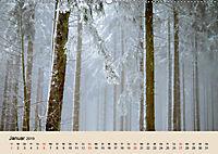 Der Wald. Durch zauberhafte Waldlandschaften (Wandkalender 2019 DIN A2 quer) - Produktdetailbild 1