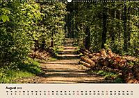 Der Wald. Durch zauberhafte Waldlandschaften (Wandkalender 2019 DIN A2 quer) - Produktdetailbild 8
