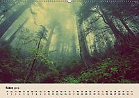 Der Wald. Durch zauberhafte Waldlandschaften (Wandkalender 2019 DIN A2 quer) - Produktdetailbild 3