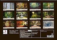 Der Wald. Durch zauberhafte Waldlandschaften (Wandkalender 2019 DIN A2 quer) - Produktdetailbild 13