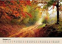 Der Wald. Durch zauberhafte Waldlandschaften (Wandkalender 2019 DIN A2 quer) - Produktdetailbild 10