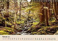 Der Wald. Durch zauberhafte Waldlandschaften (Wandkalender 2019 DIN A4 quer) - Produktdetailbild 2