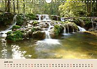 Der Wald. Durch zauberhafte Waldlandschaften (Wandkalender 2019 DIN A4 quer) - Produktdetailbild 6