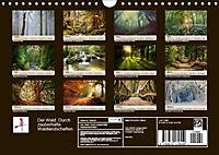 Der Wald. Durch zauberhafte Waldlandschaften (Wandkalender 2019 DIN A4 quer) - Produktdetailbild 13