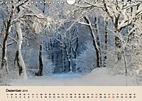 Der Wald. Durch zauberhafte Waldlandschaften (Wandkalender 2019 DIN A4 quer) - Produktdetailbild 12