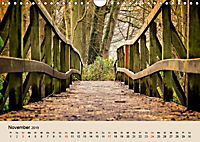 Der Wald. Durch zauberhafte Waldlandschaften (Wandkalender 2019 DIN A4 quer) - Produktdetailbild 11