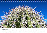 Der Wilde Westen - Weitblicke (Tischkalender 2019 DIN A5 quer) - Produktdetailbild 10