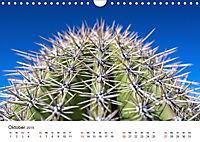 Der Wilde Westen - Weitblicke (Wandkalender 2019 DIN A4 quer) - Produktdetailbild 10