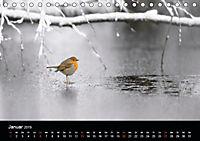 Der Zauber der Natur (Tischkalender 2019 DIN A5 quer) - Produktdetailbild 1