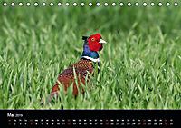 Der Zauber der Natur (Tischkalender 2019 DIN A5 quer) - Produktdetailbild 5