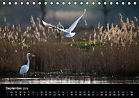 Der Zauber der Natur (Tischkalender 2019 DIN A5 quer) - Produktdetailbild 9