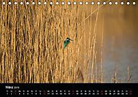 Der Zauber der Natur (Tischkalender 2019 DIN A5 quer) - Produktdetailbild 3