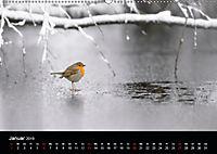 Der Zauber der Natur (Wandkalender 2019 DIN A2 quer) - Produktdetailbild 1