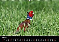 Der Zauber der Natur (Wandkalender 2019 DIN A2 quer) - Produktdetailbild 5