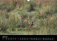 Der Zauber der Natur (Wandkalender 2019 DIN A3 quer) - Produktdetailbild 6
