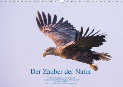 Der Zauber der Natur (Wandkalender 2019 DIN A3 quer), Andreas Holzhausen