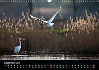 Der Zauber der Natur (Wandkalender 2019 DIN A3 quer) - Produktdetailbild 9