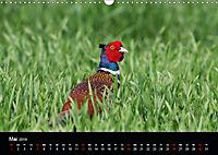 Der Zauber der Natur (Wandkalender 2019 DIN A3 quer) - Produktdetailbild 5
