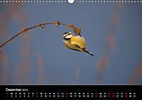 Der Zauber der Natur (Wandkalender 2019 DIN A3 quer) - Produktdetailbild 12