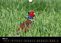 Der Zauber der Natur (Wandkalender 2019 DIN A4 quer) - Produktdetailbild 5