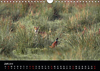 Der Zauber der Natur (Wandkalender 2019 DIN A4 quer) - Produktdetailbild 6