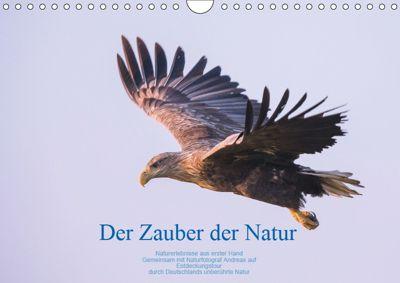 Der Zauber der Natur (Wandkalender 2019 DIN A4 quer), Andreas Holzhausen