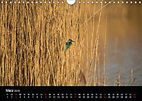 Der Zauber der Natur (Wandkalender 2019 DIN A4 quer) - Produktdetailbild 3