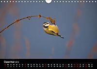 Der Zauber der Natur (Wandkalender 2019 DIN A4 quer) - Produktdetailbild 12