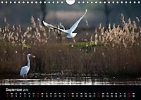 Der Zauber der Natur (Wandkalender 2019 DIN A4 quer) - Produktdetailbild 9