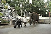Der Zoowärter - Produktdetailbild 8