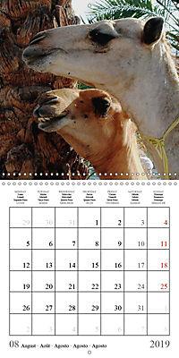 Deserts of Arabia (Wall Calendar 2019 300 × 300 mm Square) - Produktdetailbild 8