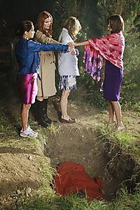 Desperate Housewives - Die komplette Staffel 8 - Produktdetailbild 3