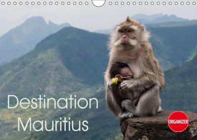 Destination Mauritius (Wall Calendar 2019 DIN A4 Landscape), Andreas Schoen