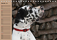 Deutsche Doggen - Sanfte Riesen (Tischkalender 2019 DIN A5 quer) - Produktdetailbild 1