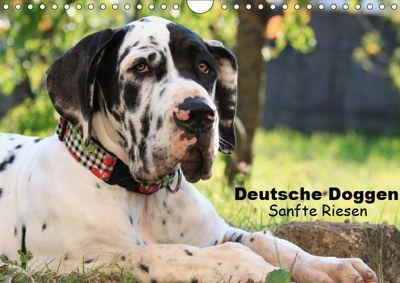 Deutsche Doggen - Sanfte Riesen (Wandkalender 2019 DIN A4 quer), Marion Reiß - Seibert
