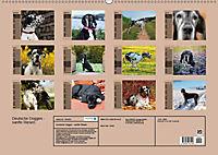 Deutsche Doggen - Sanfte Riesen (Wandkalender 2019 DIN A2 quer) - Produktdetailbild 13