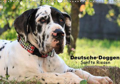 Deutsche Doggen - Sanfte Riesen (Wandkalender 2019 DIN A3 quer), Marion Reiss - Seibert